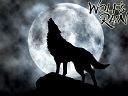 B_Wolf