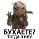 В_Васильев