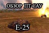 Обзор E25 - гайд по прем-танку E-25 World of tanks